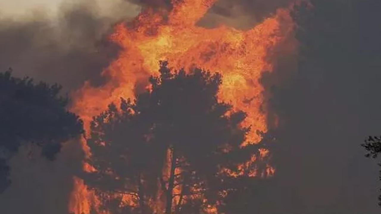 Manavgat'taki yangını çıkardığı iddia edilen kişilere linç girişimi!
