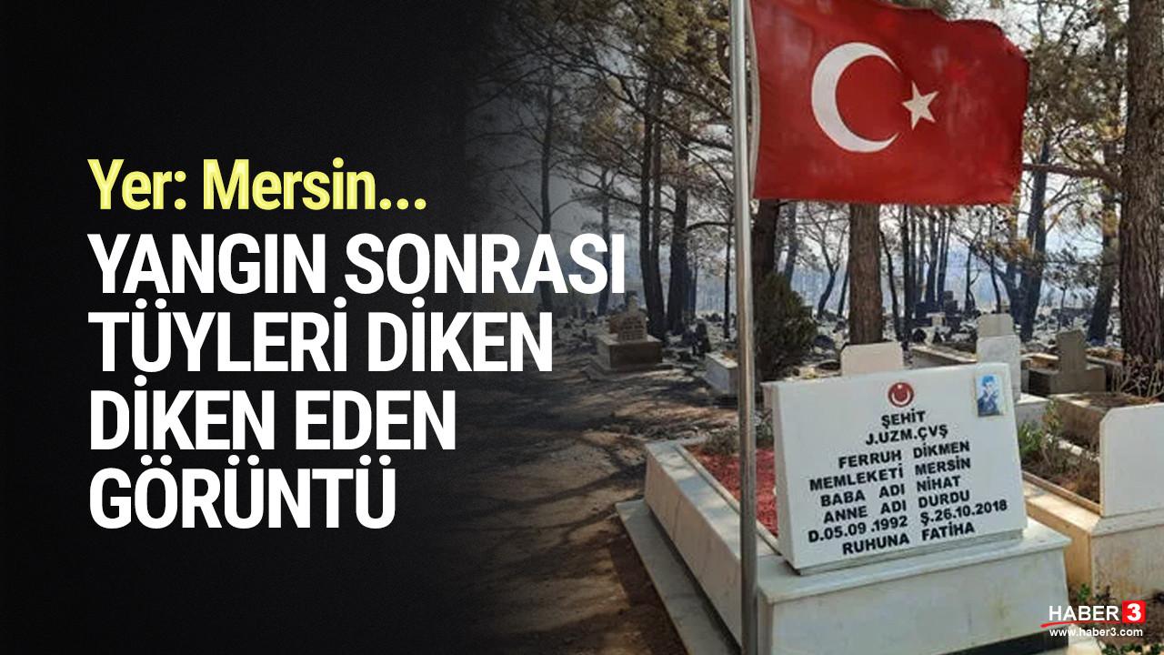 Mezarlık yandı, şehit kabri ve Türk bayrağı yanmadı