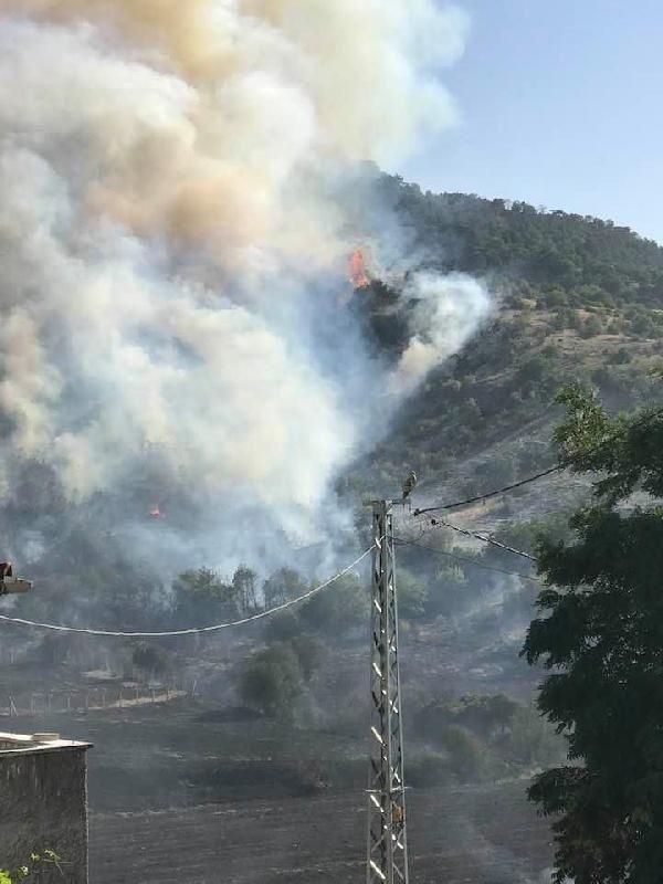 Ankara'da da orman yangını çıktı - Resim: 2