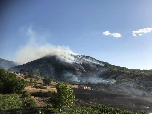 Ankara'da da orman yangını çıktı - Resim: 3