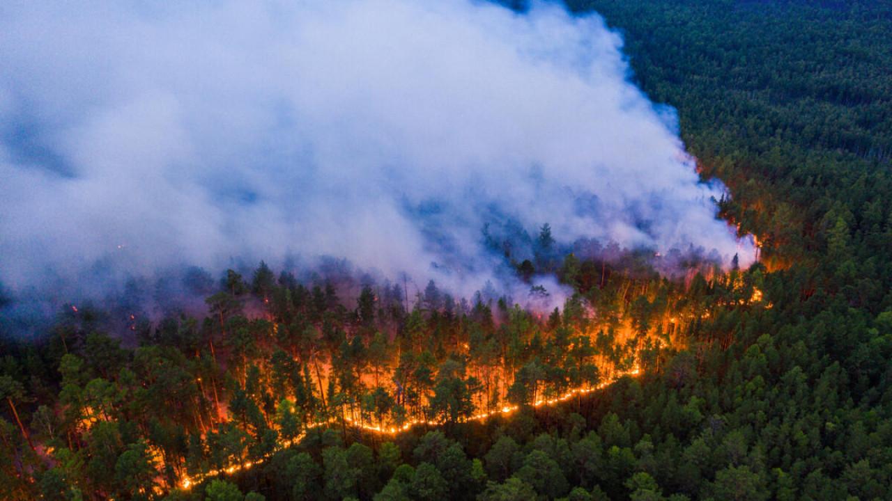 Orman yangınlarında son durum: İşte kontrol altına alınan ve devam eden yangınlar
