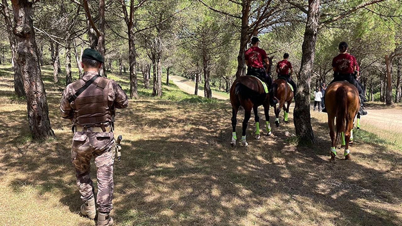 İstanbul'un ormanlarında atlı polislerle denetim