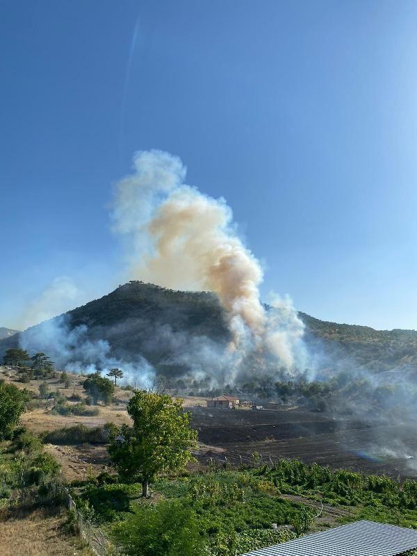 Ankara'da da orman yangını çıktı