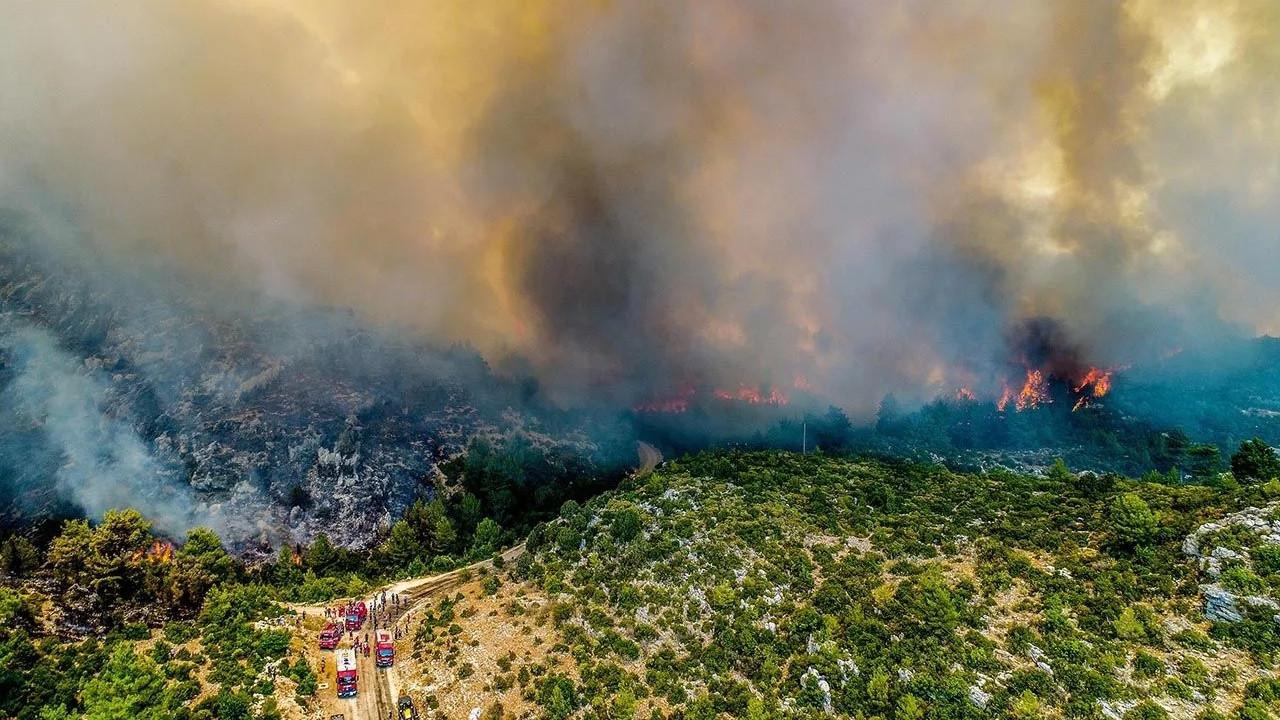 Bakan Pakdemirli paylaştı: İşte orman yangınlarında son durum