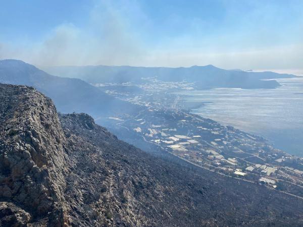 Mersin'deki yangın kontrol altında: Felaketten geriye bu görüntüler kaldı