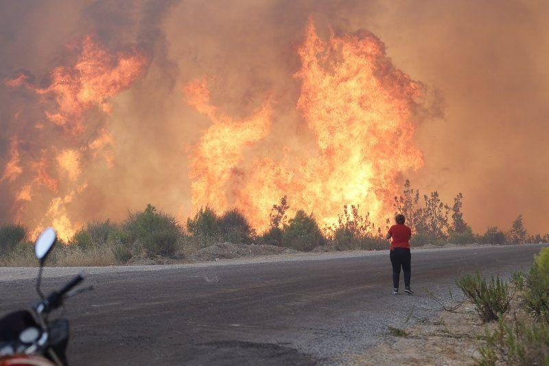 Manavgat'taki orman yangınında asker polis bu 2 kişinin peşinde - Resim: 2