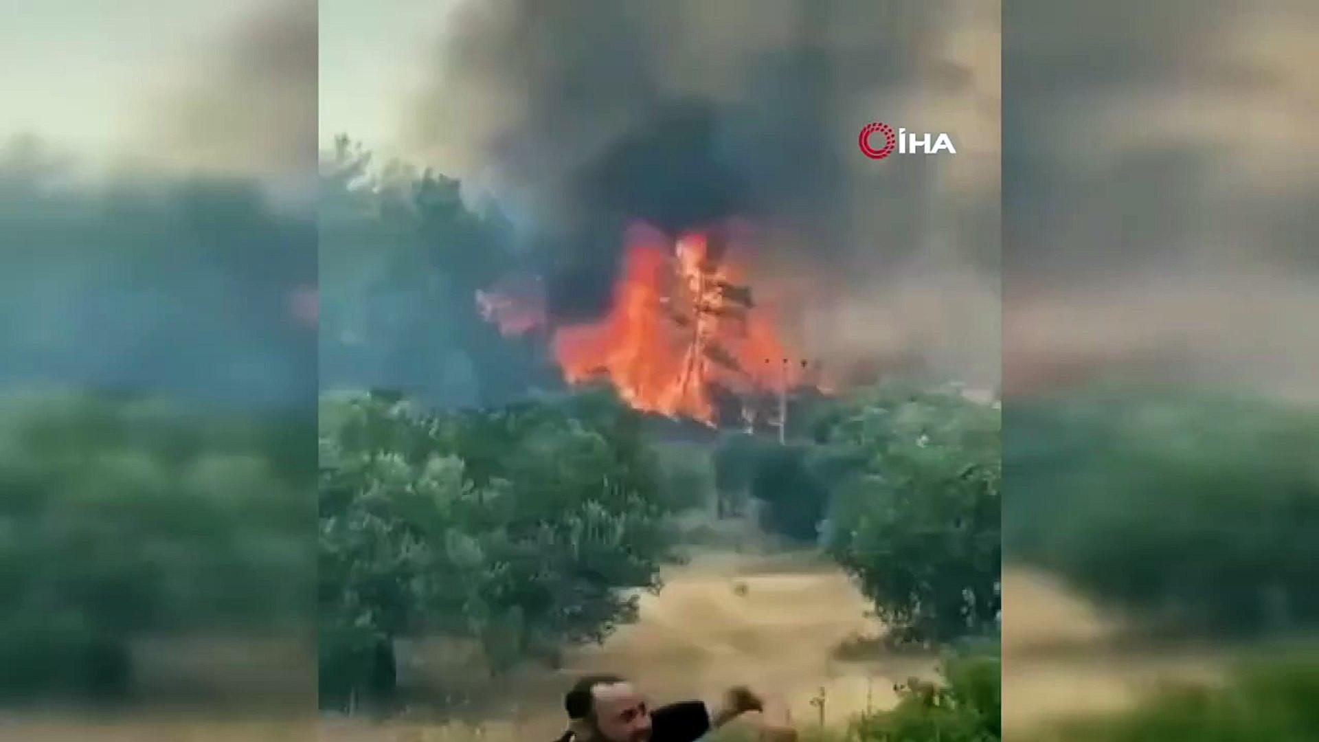 Her yer saniyeler içinde yandı: Patlayan kozalaklar yangını böyle büyüttü