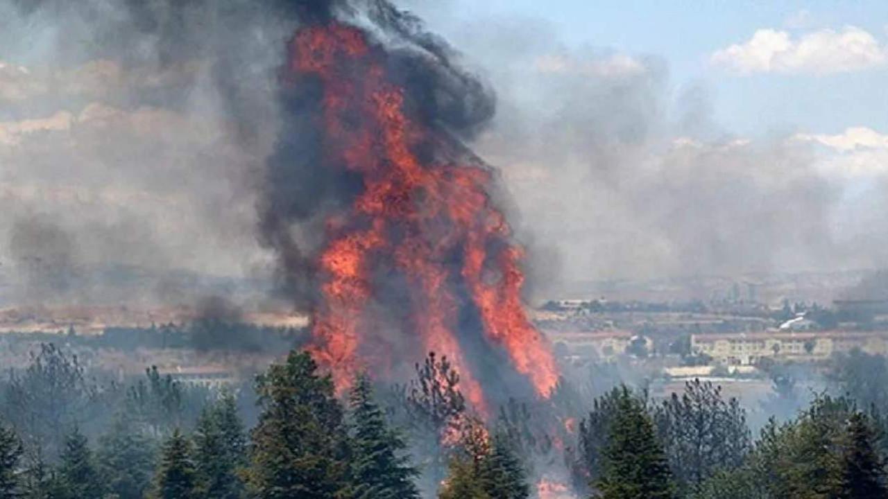 AOÇ yangını şüphelisine istenen ceza belli oldu