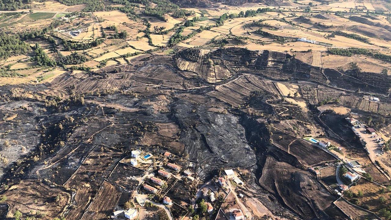 Bodrum ve Milas'tan kahreden görüntüler: Yanan alanlar havadan görüntülendi