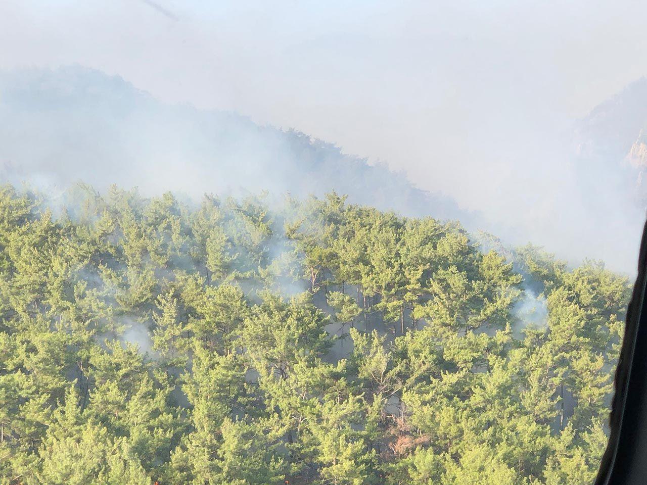 Bodrum ve Milas'tan kahreden görüntüler: Yanan alanlar havadan görüntülendi - Resim: 3