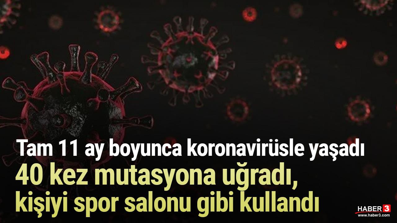 Korkutan araştırma: Koronavirüs en uzun korona hastasında 40 kez mutasyona uğradı