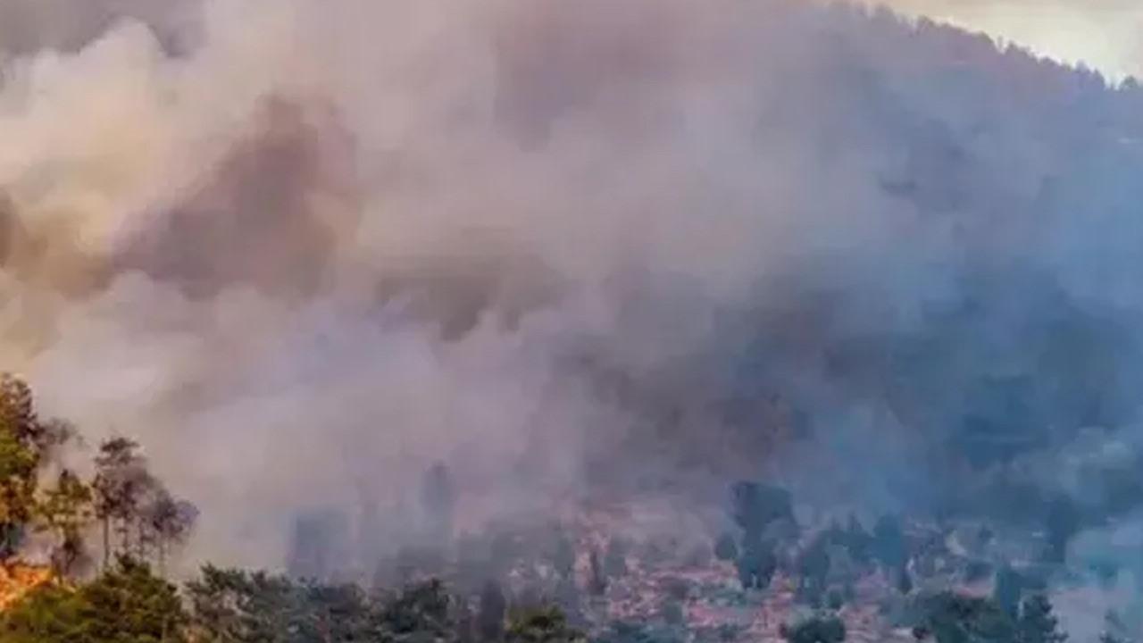 Aydın'da iki ilçede orman yangını çıktı