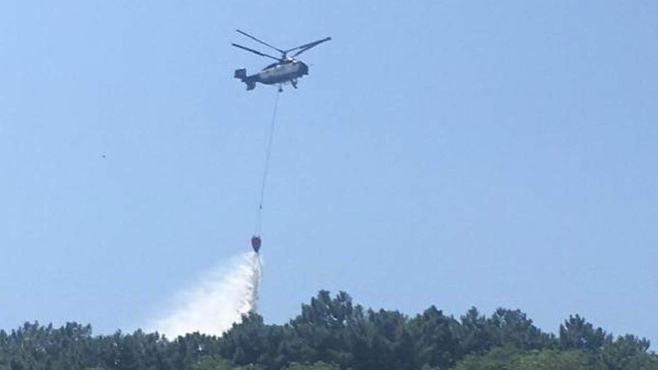 İstanbul Beykoz'da korkutan orman yangını!