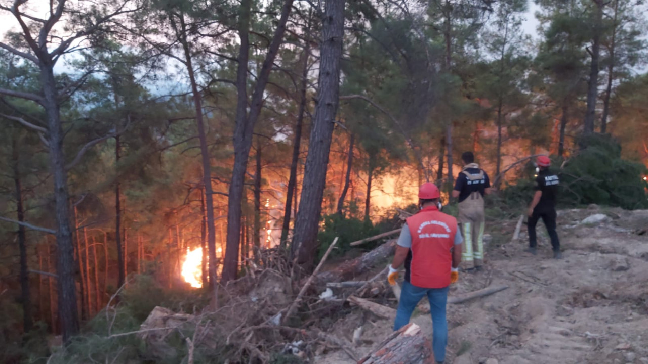 Kartal Belediyesi Ekiplerinin Orman Yangınları İle Mücadelesi Sürüyor