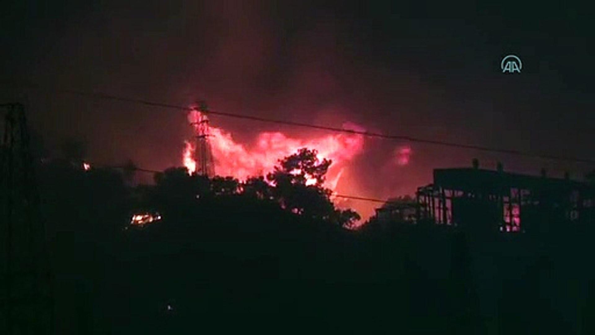 Milas'taki yangınlarda alevler termik santrale sıçradı