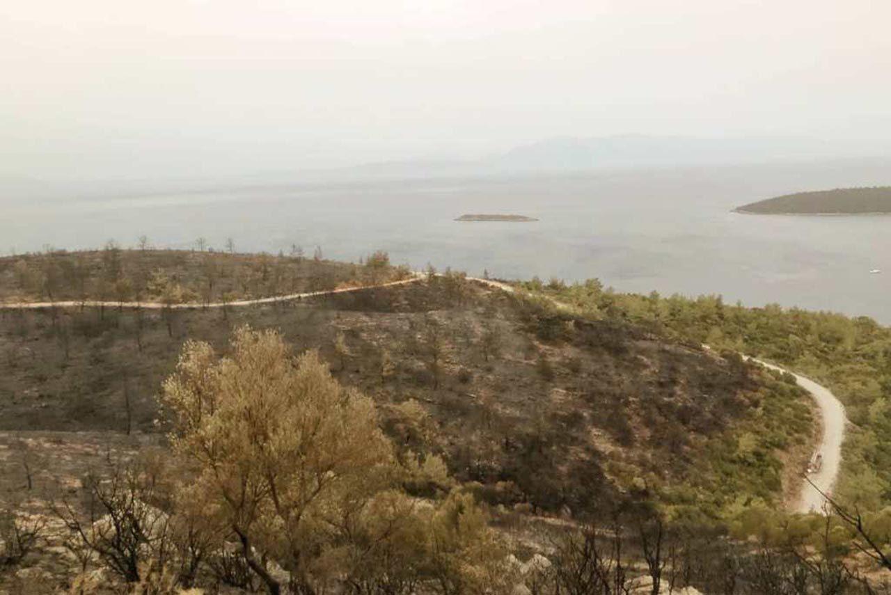 Orman yangınlarıyla mücadele sürüyor... Türkiye bu fotoğrafı konuşacak! - Resim: 2