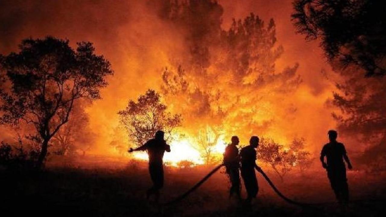 Muğla'daki yangın şüphelilerine ilişkin yeni gelişme
