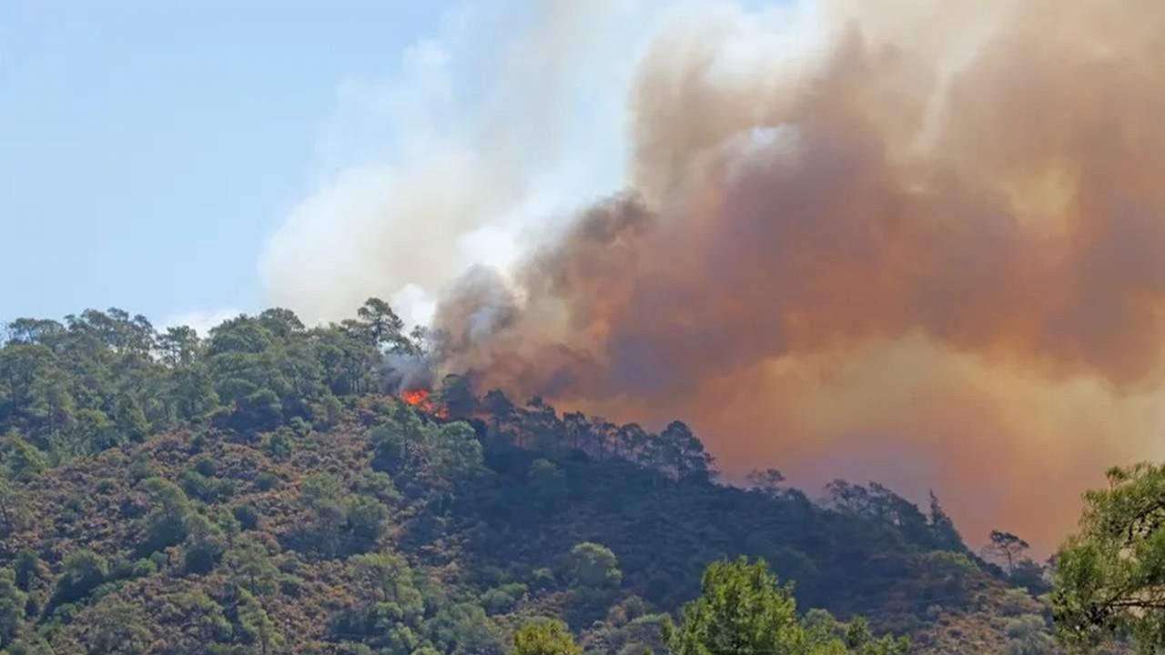 Son durum açıklandı: 239 yangından 234'ü söndürüldü, 5'i devam ediyor