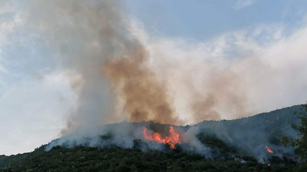 Osmaniye'de de orman yangını çıktı
