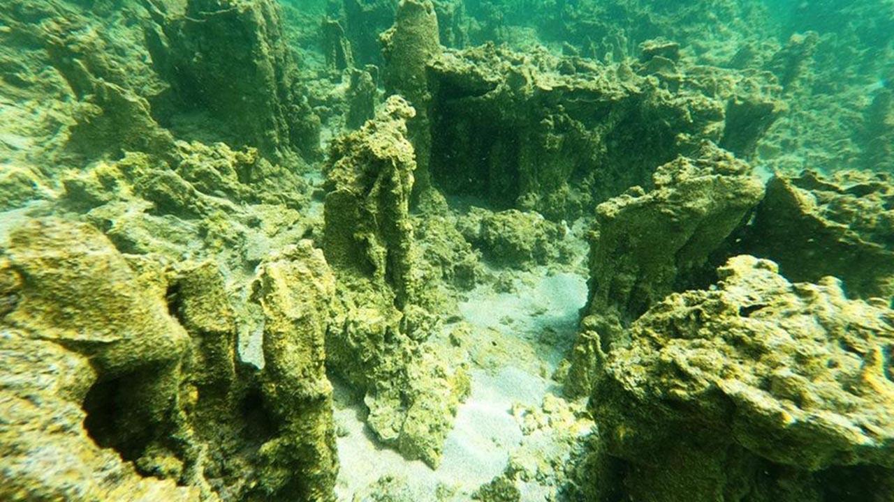 Van Gölü'nün tabanında dikkat çeken keşif
