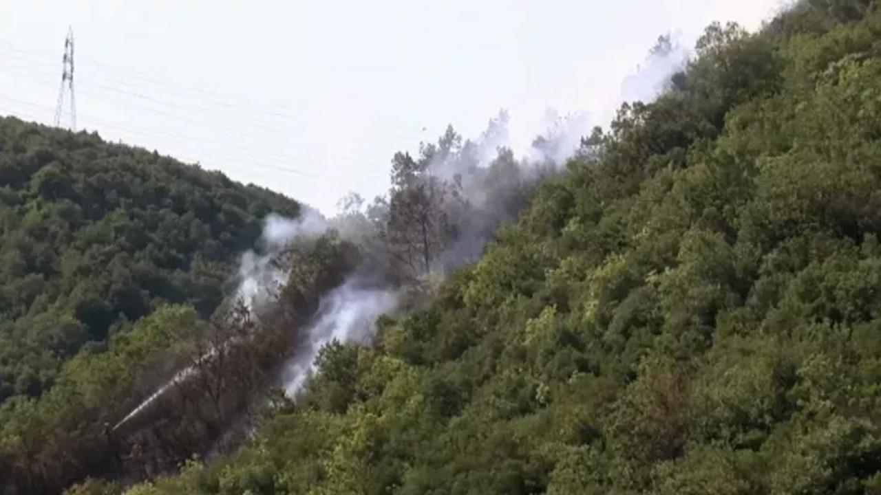 İstanbul'da orman yangını: 800 metrekarelik alan küle döndü
