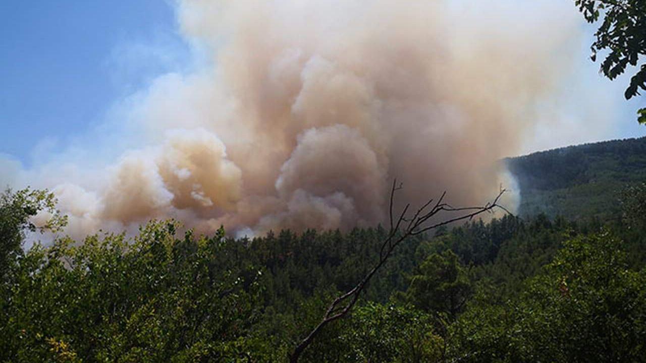 Burdur'da orman yangını! Alevler evleri tehdit ediyor