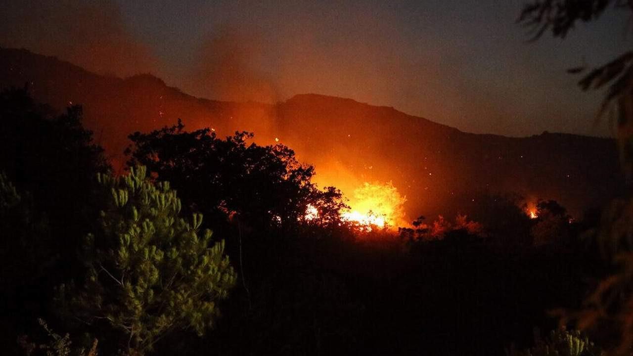 Bakan müjdeyi verdi: Bodrum'daki orman yangını kontrol altında