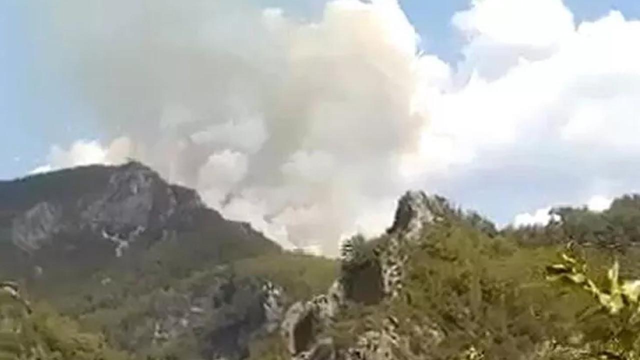 İki ilde orman yangını