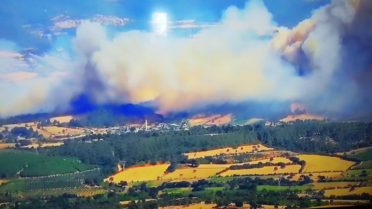 İzmir ve Çanakkale'de orman yangını