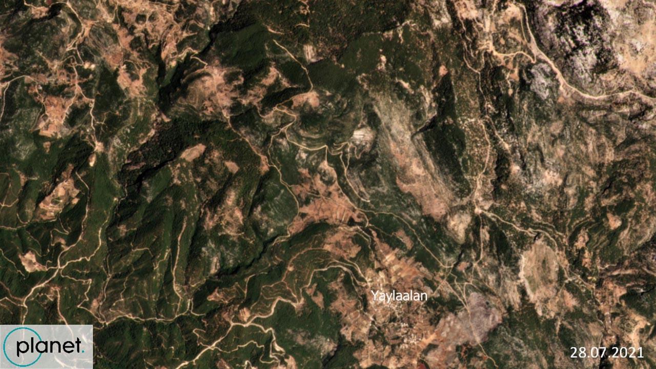 250 bin futbol sahası büyüklüğünde: Yanan ormanlar uydudan görüntülendi