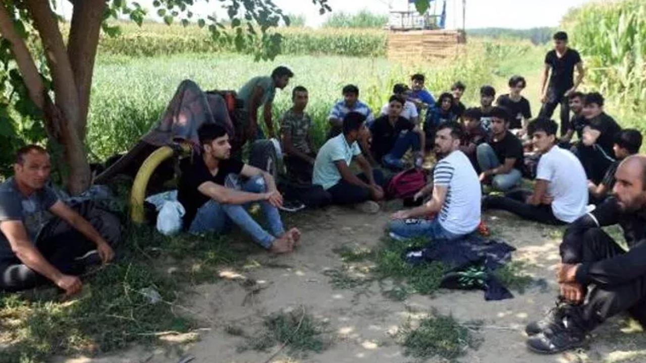 Afgan göçmenler Edirne'ye akın etti