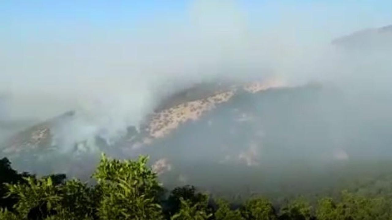 Kontrol altına alınmıştı: Tunceli'deki orman yangını
