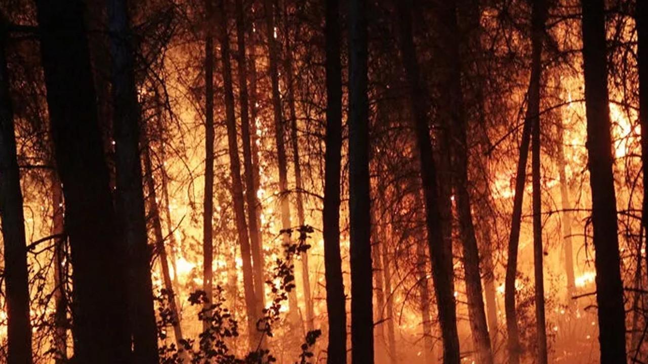 Orman yangını çıkardığı iddiasıyla yakalanan bir kişi tutuklandı