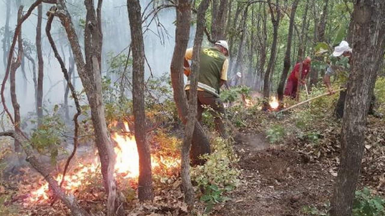 6 orman yangını kontrol altında; Tunceli'de yangın sürüyor