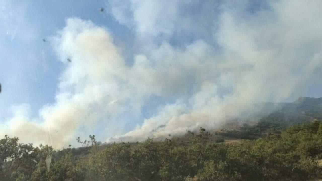Bir ilimizde daha orman yangını