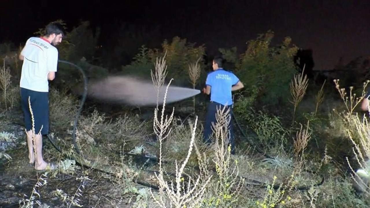 Bursa'da ormanlık alanda şüpheli yangın