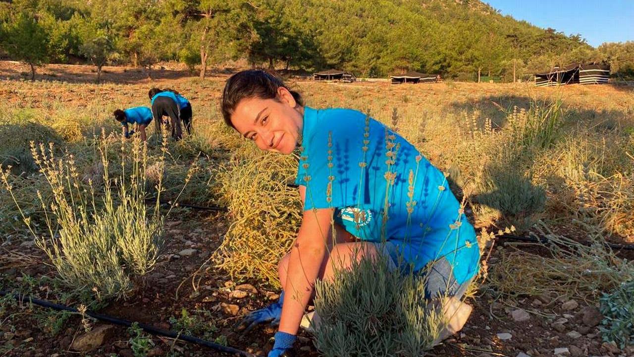 Bodrum'da Gençlik Tarım Kampı 3. dönem başladı