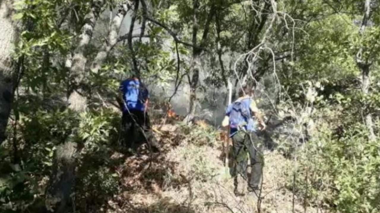 Tunceli ve Bingöl'deki orman yangınları söndürülemedi