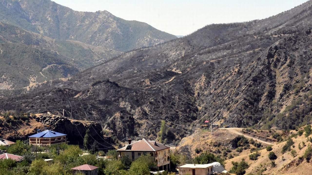 Bitlis'teki orman yangını 4 gün sonra kontrol altında