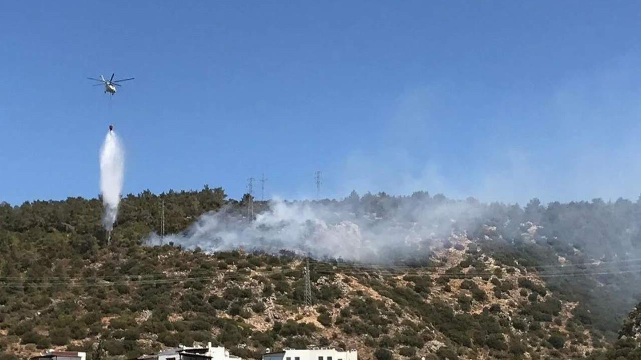 Bodrum'da orman yangını! Yerleşim yerleri tehdit altında