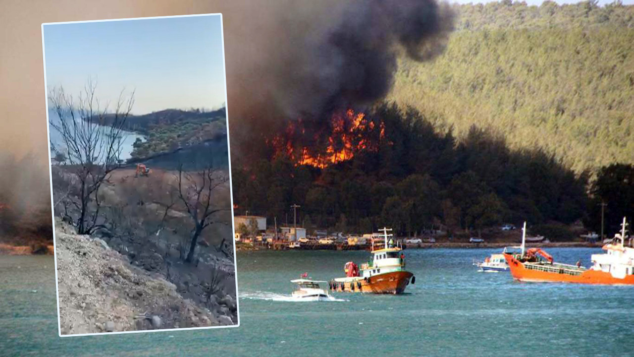 Yangınlarla kül olan Bodrum'daki iş makinaları kameralara yakalandı