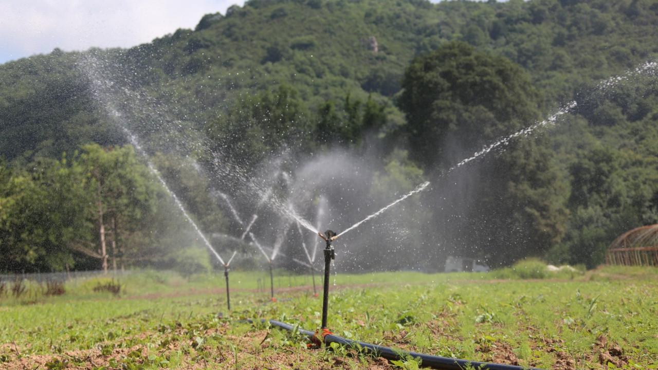 İstanbul'da kapalı sulama sistemi ile toprakta verim artıyor