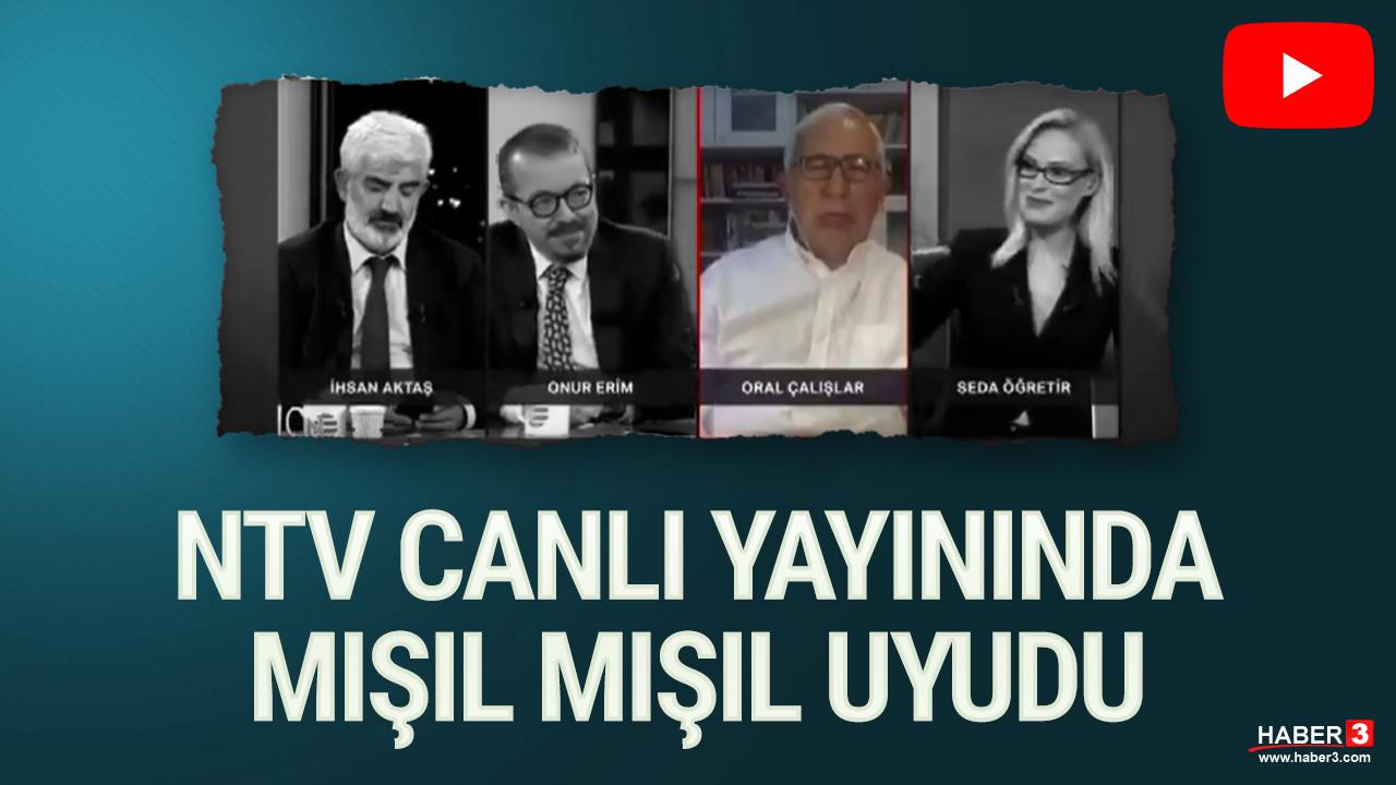 NTV canlı yayınında ilginç anlar... Mışıl mışıl uyudu!