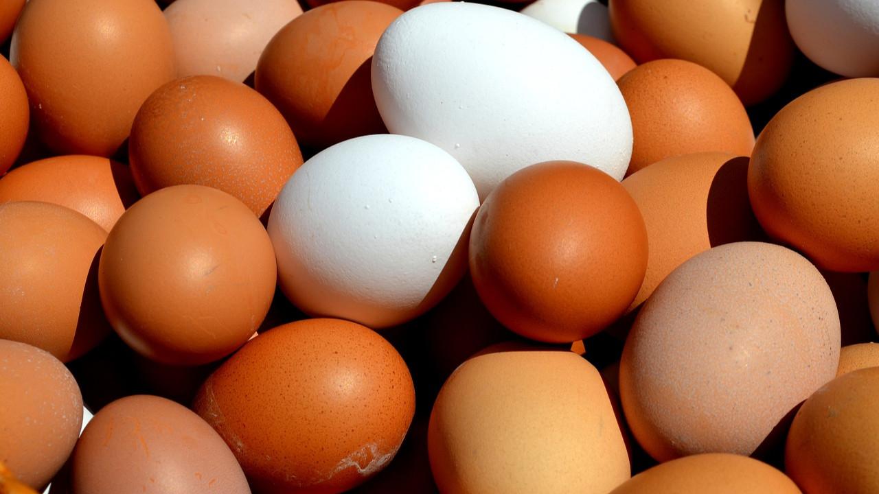 Zincir marketlerde şimdi de '''organik yumurta'' oyunu