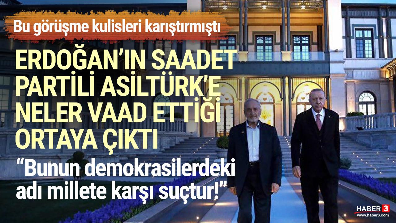 Erdoğan'ın Saadet Partili Asiltürk'e neler vadettiği ortaya çıktı