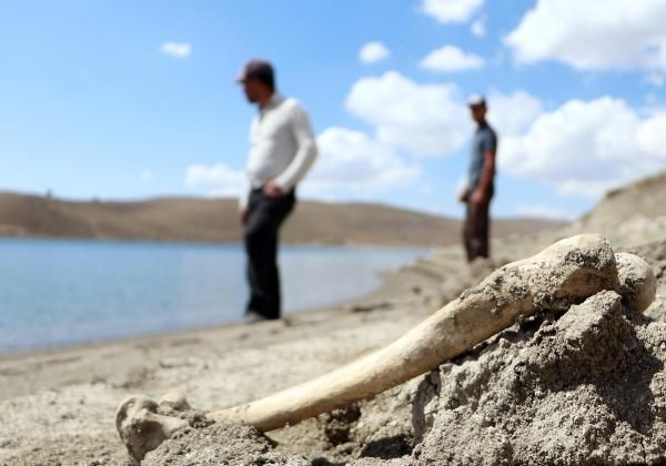 Sahilde kahreden görüntü! İnsan kemikleri kıyıya vurdu