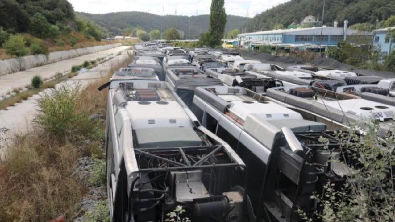 AK Partili İBB'nin çürümeye terk ettiği otobüsler ortaya çıktı