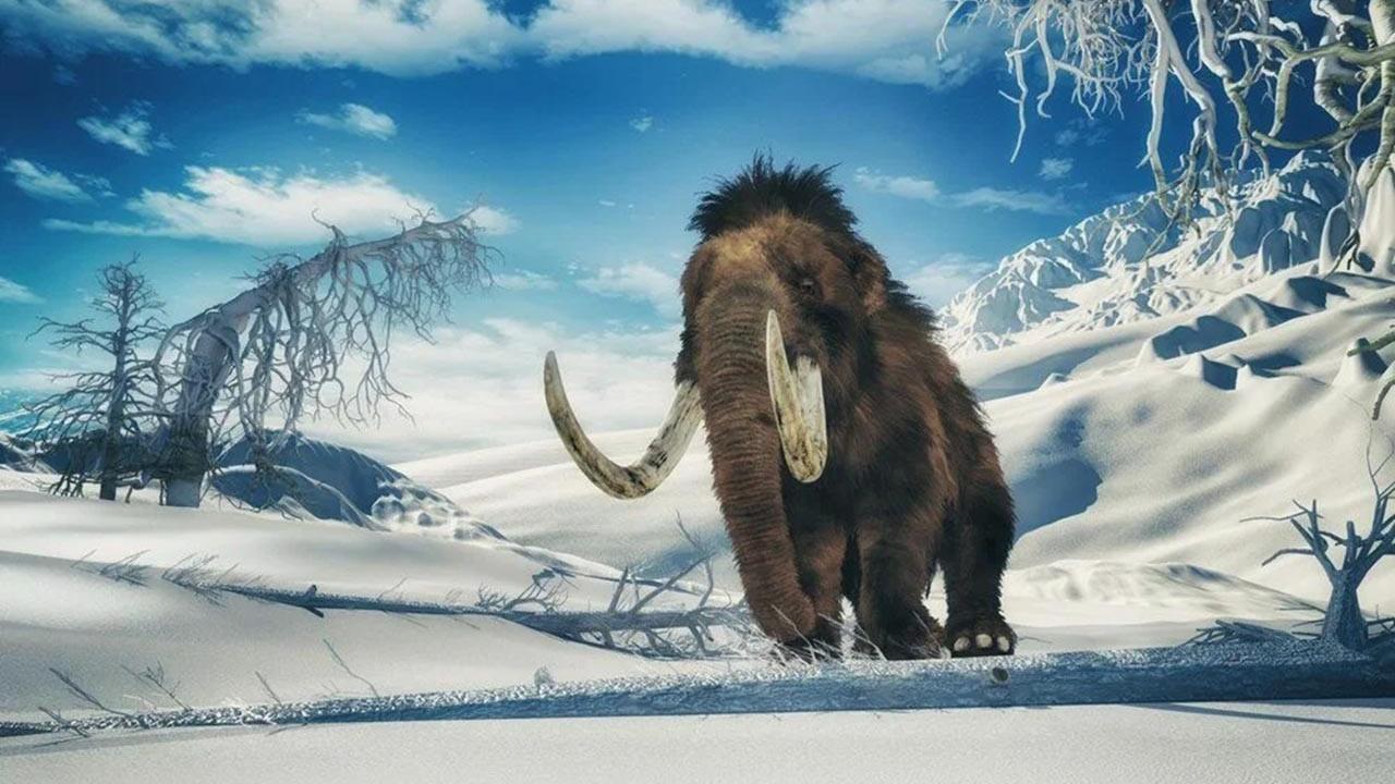 10 bin yıl önce nesli tükenen mamutlar geri dönüyor
