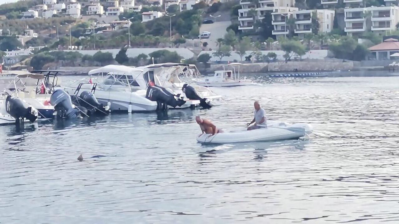 Bodrum'da ilginç anlar: Köpekbalığını elleriyle yakaladı! - Resim: 4