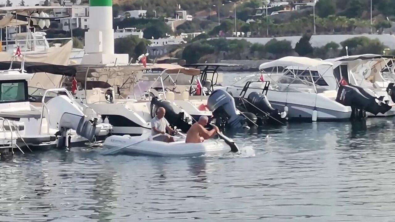 Bodrum'da ilginç anlar: Köpekbalığını elleriyle yakaladı!